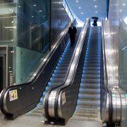bases de licitación para servicios de transporte vertical