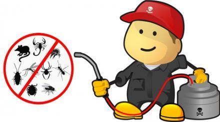 bases de licitación servicio control de plagas